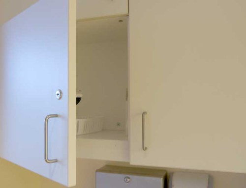 Flairwood Healthcare Patient Wall Cabinet